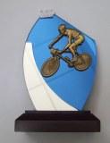Verre Cycliste VTT